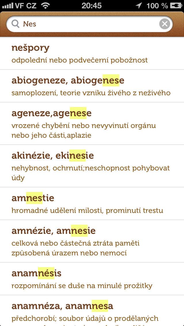 Velký slovník cizích slov